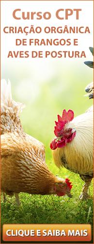 Curso CPT Criação Orgânica de Frangos de Corte e Aves de Postura. Clique aqui e conheça!