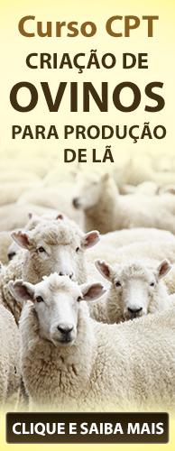 Curso CPT Criação de Ovinos para Produção de Lã. Clique aqui e conheça!
