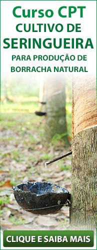 Curso CPT Cultivo de Seringueira. Clique aqui e conheça!