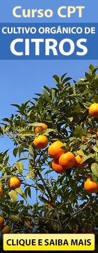 Curso CPT Cultivo Orgânico de Citros. Clique aqui e conheça!