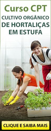 Curso CPT Cultivo Orgânico de Hortaliças em Estufa. Clique aqui e conheça!