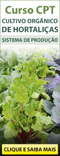 Curso CPT Cultivo Orgânico de Hortaliças - Sistema de Produção. Clique aqui e conheça!