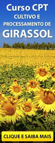 Curso CPT Cultivo e Processamento de Girassol. Clique aqui e conheça!