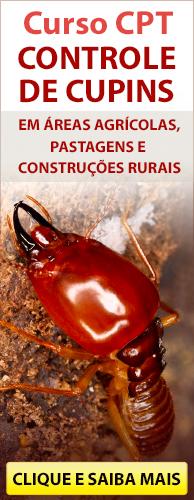 Curso CPT Controle de Cupins em Áreas Agrícolas, Pastagens e Construções Rurais. Clique aqui e conheça!