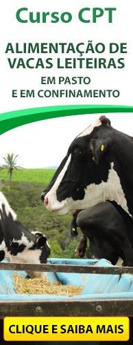 Curso CPT Curso Alimentação de Vacas Leiteiras em Pasto e em Confinamento. Clique aqui e conheça!