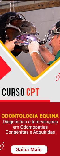 Curso CPT Curso Odontologia Equina: Diagnóstico e Intervenções em Odontopatias Congênitas e Adquiridas. Clique aqui e conheça!
