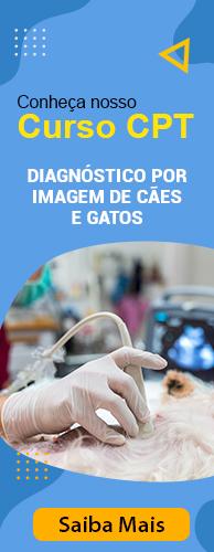 Curso CPT Diagnóstico por Imagem de Cães e Gatos. Clique aqui e conheça!
