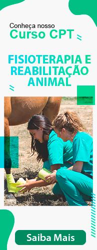 Curso CPT Fisioterapia e Reabilitação Animal. Clique aqui e conheça!