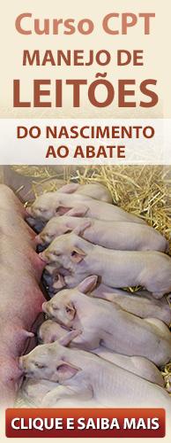 Curso CPT Manejo de Leitões do Nascimento ao Abate. Clique aqui e conheça!