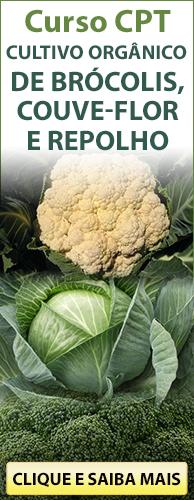 Curso CPT Cultivo Orgânico de Brócolis, Couve-Flor e Repolho. Clique aqui e conheça!