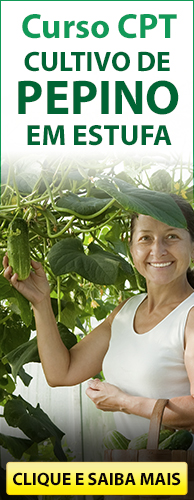 Curso CPT Cultivo de Pepino em Estufa. Clique aqui e conheça!