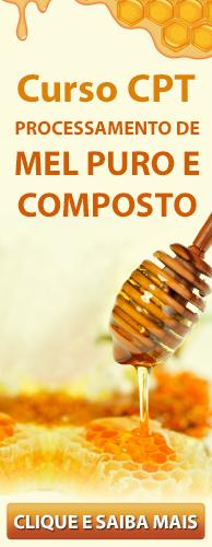 Curso CPT Processamento de Mel Puro e Composto. Clique aqui e conheça!