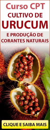 Curso CPT Cultivo de Urucum e Produção de Corantes Naturais. Clique aqui e conheça!