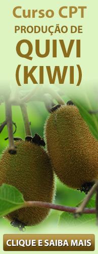 Curso CPT Produção de Quivi (Kiwi). Clique aqui e conheça!