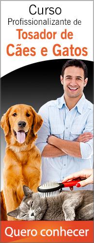 Curso Profissionalizante de Tosador de Cães e Gatos. Clique aqui e conheça!