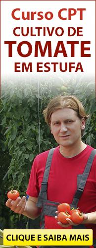 Curso CPT Cultivo de Tomate em Estufa. Clique aqui e conheça!