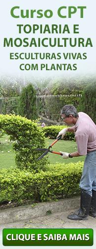 Curso CPT Topiaria e Mosaicultura - Esculturas Vivas com Plantas. Clique aqui e conheça!