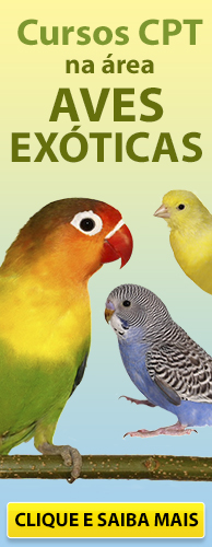 Conheça os Cursos CPT na área Aves Exóticas. Clique aqui.