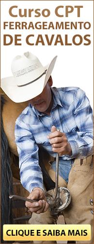 Curso CPT Aparação de Cascos, Correção de Aprumos e Ferrageamento de Cavalos. Clique aqui e conheça!