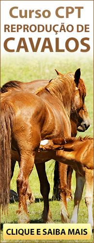 Curso CPT Reprodução de Cavalos. Clique aqui e conheça!