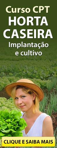 Curso CPT Horta Caseira - Implantação e Cultivo. Clique aqui e conheça!