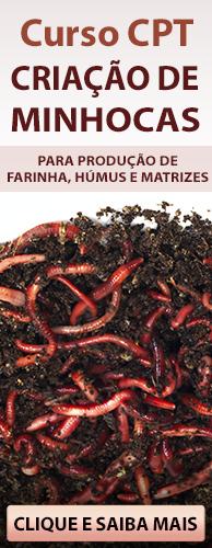 Curso CPT Criação de Minhocas para Produção de Farinha, Húmus e Matrizes. Clique Aqui e Conheça!