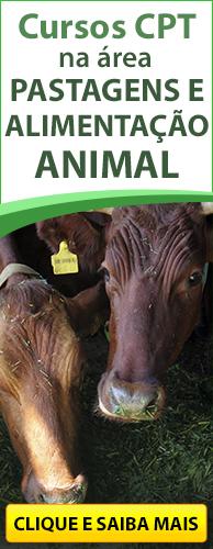 Conheça os Cursos CPT na área Pastagens e Alimentação Animal. Clique aqui.