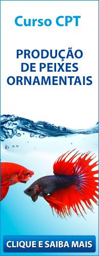 Curso CPT Produção de Peixes Ornamentais. Clique aqui e conheça!