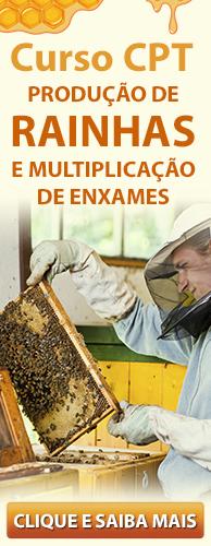 Curso CPT Produção de Rainhas e Multiplicação de Enxames. Clique aqui e conheça!
