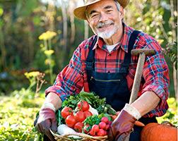 Curso Profissionalizante de Horticultor