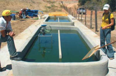 Curso cria o de peixes constru o e abastecimento dos for Piscicultura en tanques plasticos