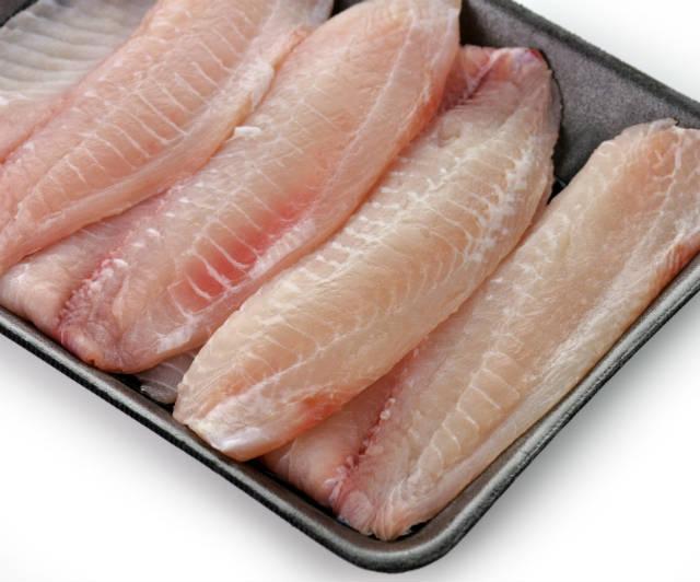 Como processar e conservar o pescado