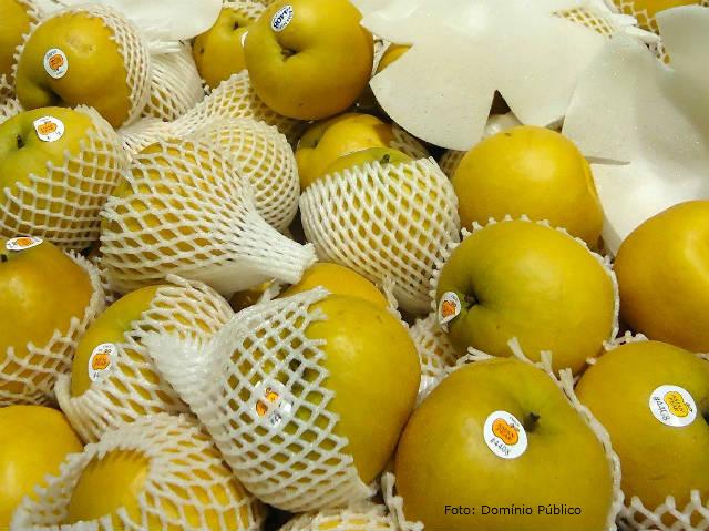 Projeto prevê novas regras para embalagens de frutas e hortaliças