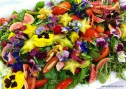 Flores comestíveis: cultivo de plantas ornamentais para utilização na culinária