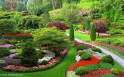 Paisagismo: conheça e identifique os elementos paisagísticos