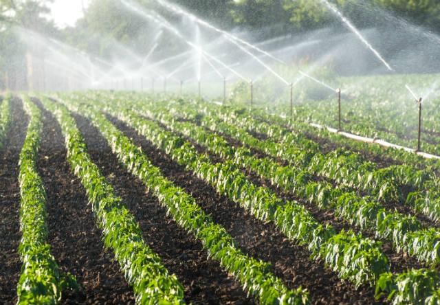 Conheça o novo curso a distância Projeto de Irrigação por Aspersão