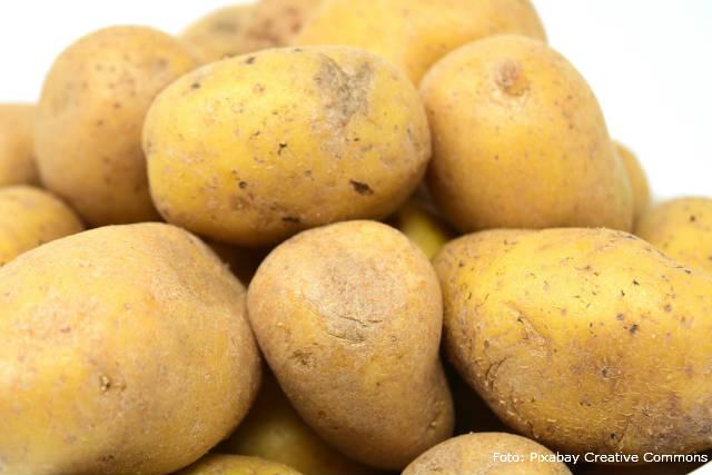 Plástico feito de batata reduz uso de plásticos não degradáveis