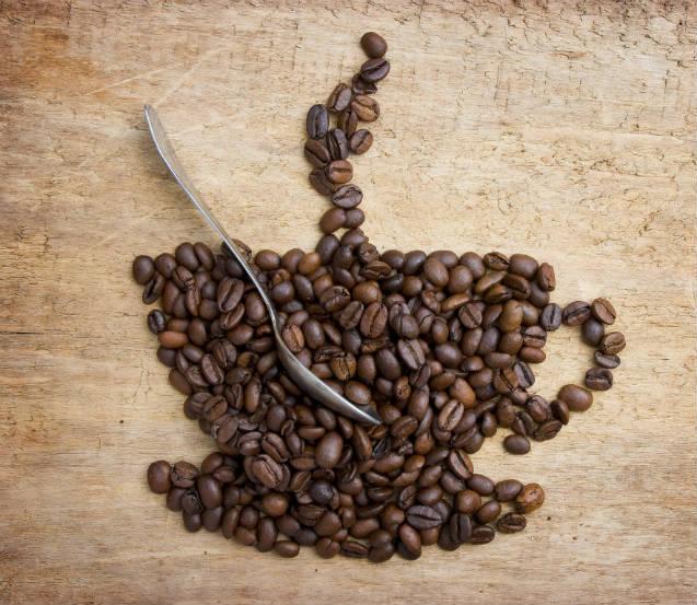 Dicas de manejo de café com excelência