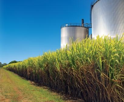Valorização do açúcar reduz produção de biocombustível