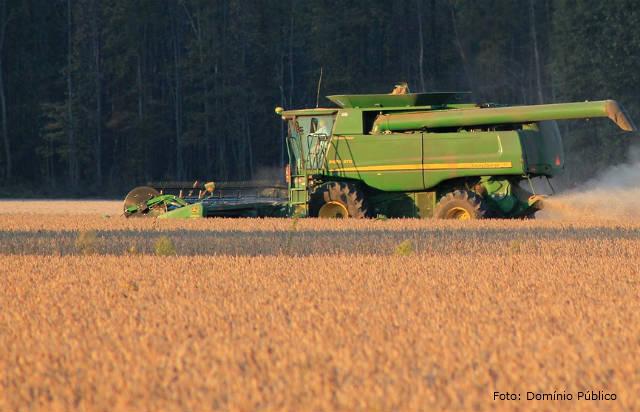 Soja - principal matéria-prima para biodiesel no Brasil