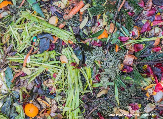 Brasil desperdiça entre 10% e 40% dos alimentos