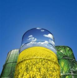Produção de biodiesel na fazenda