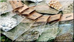 Plantas medicinais e condimentares hidropônicas