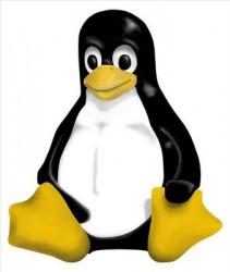 Curso Como Montar Redes Locais com Servidor Linux