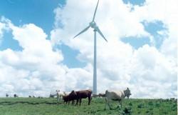 Energia Eólica para Geração de Eletricidade e Bombeamento de Água