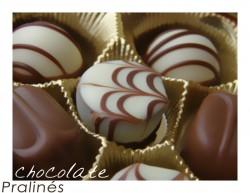 Como Montar e Operar uma Pequena Fábrica de Chocolates