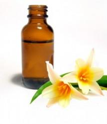Os florais são preparados somente a partir de flores e nunca são tóxicos, têm natureza vibracional e não química