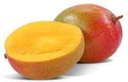 Por ser uma fruta de clima tropical, as áreas, onde há uma melhor adaptação da manga, são aquelas que apresentam as estações secas e chuvosas mais ou menos definidas