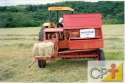A produção intensiva de feno, em função do elevado número de operações de máquinas, promove a compactação da camada superficial do solo