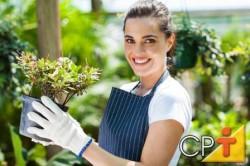 Para o preparo do terreno e a implantação do jardim será preciso utilizar determinadas ferramentas